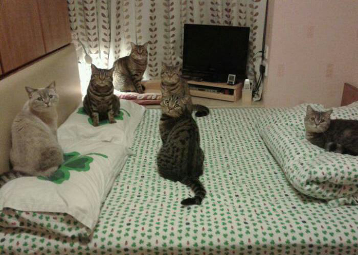 This doesn't concern you, please close the door